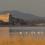 Lago di Burano